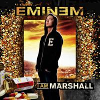 I Am Marshall Cover