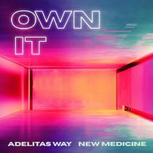 Own It (CDS)