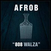 808 Walza (CDS)