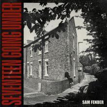 Seventeen Going Under (Deluxe Version)